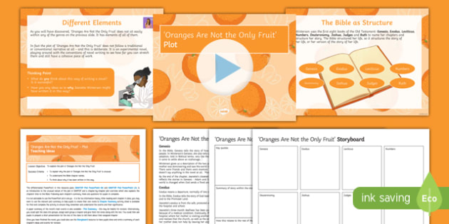 Oranges Are Not the Only Fruit Lesson Pack: Plot