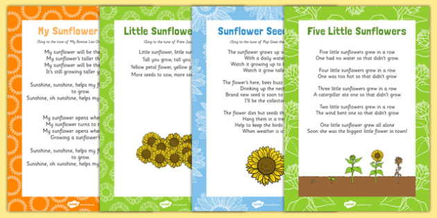 Sunflower Themed Songs and Rhymes Resource Pack