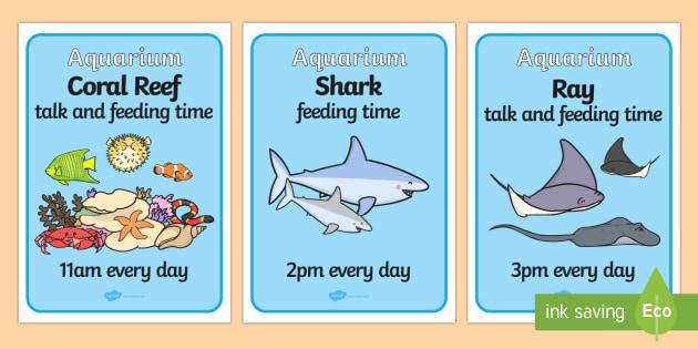 The Aquarium Feeding Times Role Play Posters - aquarium, feeding, times, feeding times, role, play, role play, poster, feeding time poster, aquarium poster