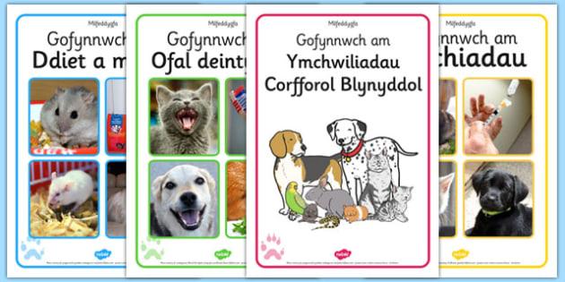 Posteri 'Milfeddygfa' - welsh, cymraeg, poster, milfeddygfa, geirfa, lluniau