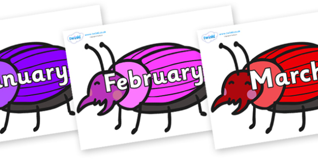 Months of the Year on Beetles - Months of the Year, Months poster, Months display, display, poster, frieze, Months, month, January, February, March, April, May, June, July, August, September