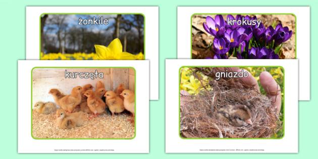 Zdjęcia na gazetkę Wiosna po polsku - pory roku