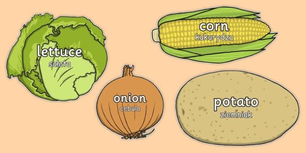 Vegetable Words on Vegetables Polish Translation - polish, vegetable, words