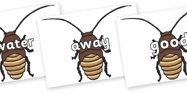 Next 200 Common Words on Cockroach - Next 200 Common Words on  - DfES Letters and Sounds, Letters and Sounds, Letters and sounds words, Common words, 200 common words