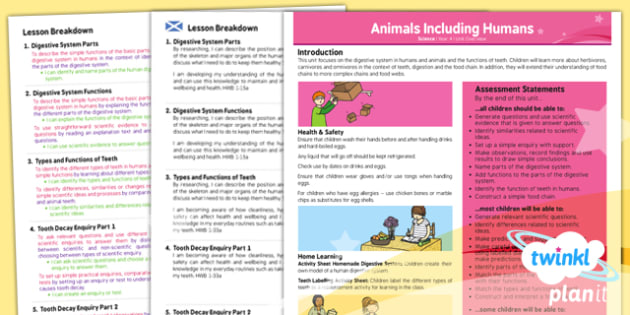 PlanIt - Science Year 4 - Animals Including Humans Planning Overview CfE - planit, science, year 4, overview, cfe