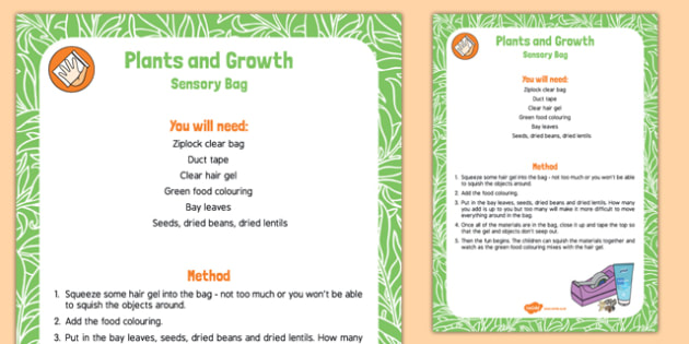 Plants and Growth Sensory Bag - bay, seeds, baby sensory, plants and growth, sensory bag