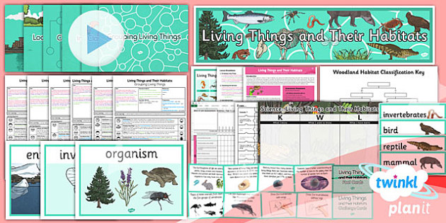 PlanIt - Science Year 4 - Living Things and Their Habitats Unit Pack - planit, science, year 4, unit pack