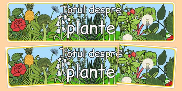Totul despre plante, Banner - primavara, cresterea plantelor