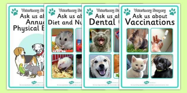 Vets Surgery Advice Display Posters - Vets, vet, photo, display poster, vet Surgery, pets, pet, role play, vets role play, vet, operation, xray, nurse, medicine, vaccine, bandage, cat, dog, rabbit
