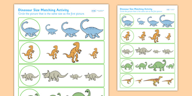Dinosaur Size Matching Worksheet - dinosaurs, size, match, shape