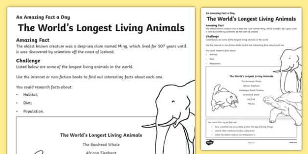 The World's Longest Living Animals Activity Sheet, worksheet