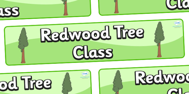 Redwood Themed Classroom Display Banner - Themed banner, banner, display banner, Classroom labels, Area labels, Poster, Display, Areas