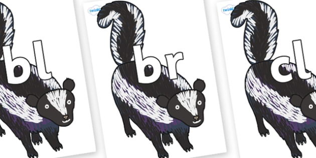 Initial Letter Blends on Skunk to Support Teaching on The Bad Tempered Ladybird - Initial Letters, initial letter, letter blend, letter blends, consonant, consonants, digraph, trigraph, literacy, alphabet, letters, foundation stage literacy