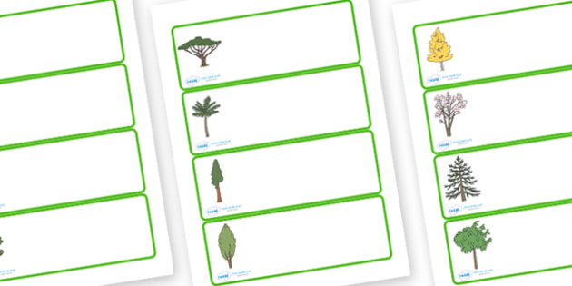 Editable Drawer - Peg - Name Labels (Trees) - Tree themed Label Templates, trees, Resource Labels, Name Labels, Editable Labels, Drawer Labels, Coat Peg Labels, Peg Label, KS1 Labels, Foundation Labels, Foundation Stage Labels, Teaching Labels, Resou