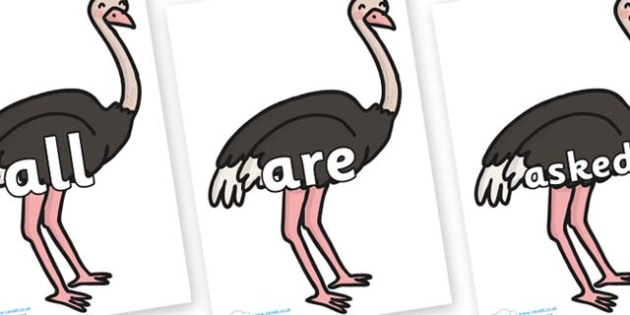 Tricky Words on Ostriches - Tricky words, DfES Letters and Sounds, Letters and sounds, display, words