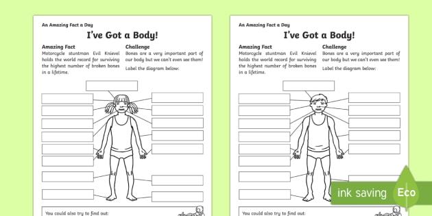 I've Got a Body! Activity Sheet