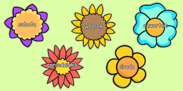 Dni tygodnia po polsku - przedszkole, zerówka, poniedziałek