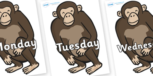 Days of the Week on Chimps - Days of the Week, Weeks poster, week, display, poster, frieze, Days, Day, Monday, Tuesday, Wednesday, Thursday, Friday, Saturday, Sunday