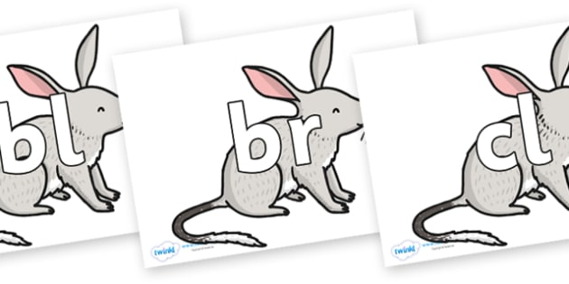 Initial Letter Blends on Bilby - Initial Letters, initial letter, letter blend, letter blends, consonant, consonants, digraph, trigraph, literacy, alphabet, letters, foundation stage literacy