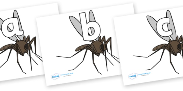 Phoneme Set on Mosquitos - Phoneme set, phonemes, phoneme, Letters and Sounds, DfES, display, Phase 1, Phase 2, Phase 3, Phase 5, Foundation, Literacy