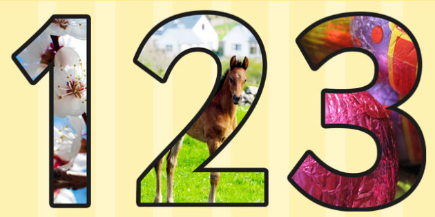 Spring Themed A4 Photo Display Numbers - spring, display, numbers