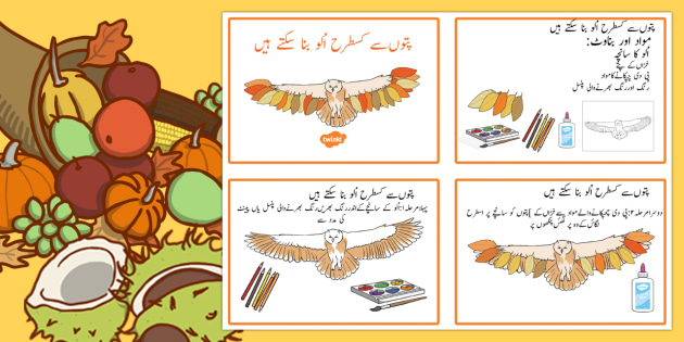 Leaf Owl Craft Instructions Urdu - urdu, Autumn, seasons, september, october, topics, ks1, harvest, hibernation, reception, EYFS, owl, animal, forest, craft, leaves, leaf