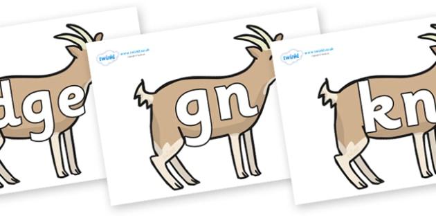 Silent Letters on Goats - Silent Letters, silent letter, letter blend, consonant, consonants, digraph, trigraph, A-Z letters, literacy, alphabet, letters, alternative sounds