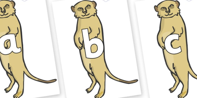 Phoneme Set on Meerkats - Phoneme set, phonemes, phoneme, Letters and Sounds, DfES, display, Phase 1, Phase 2, Phase 3, Phase 5, Foundation, Literacy