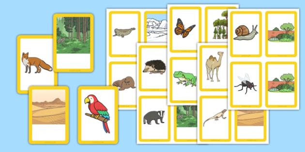 Animals and their Habitats Matching Cards - animals, habitats