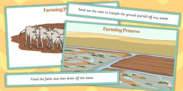 Ancient Sumer Farming Process Ordering Activity - sumer, ordering