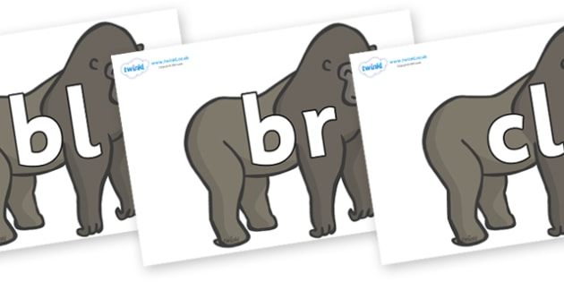 Initial Letter Blends on Gorillas - Initial Letters, initial letter, letter blend, letter blends, consonant, consonants, digraph, trigraph, literacy, alphabet, letters, foundation stage literacy