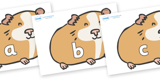 Phase 2 Phonemes on Guinea Pigs - Phonemes, phoneme, Phase 2, Phase two, Foundation, Literacy, Letters and Sounds, DfES, display