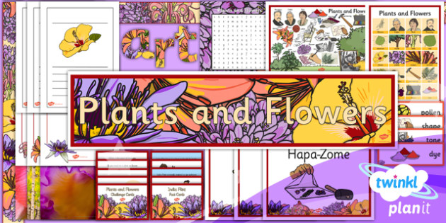 PlanIt - Art UKS2 - Plants and Flowers Unit Additional Resources