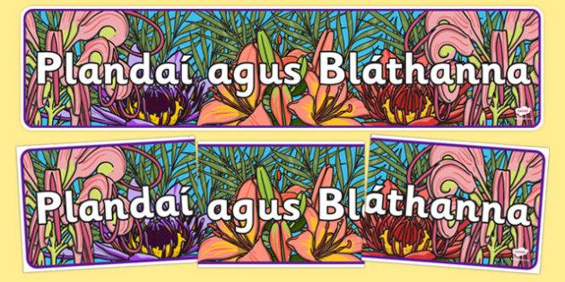 Plandaí agus Bláthanna Plants and Flowers IPC Display Banner Gaeilge - irish, gaeilge, plants and flowers, IPC display banner, IPC, plants and flowers display banner, IPC display