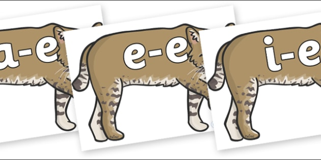 Modifying E Letters on Bobcats - Modifying E, letters, modify, Phase 5, Phase five, alternative spellings for phonemes, DfES letters and Sounds