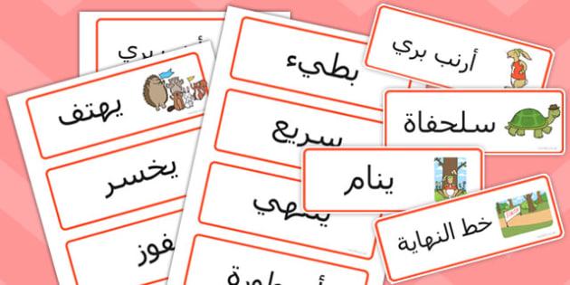 بطاقات كلمات السلحفاة والأرنب - سباق الأرنب والسلفحاة