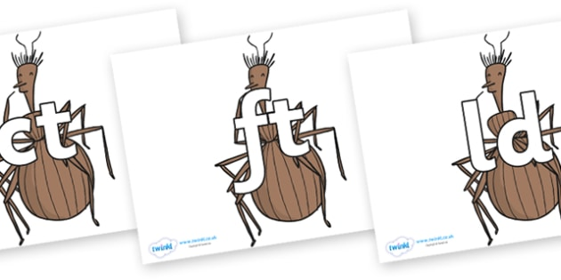 Final Letter Blends on Miss Spider to Support Teaching on James and the Giant Peach - Final Letters, final letter, letter blend, letter blends, consonant, consonants, digraph, trigraph, literacy, alphabet, letters, foundation stage literacy