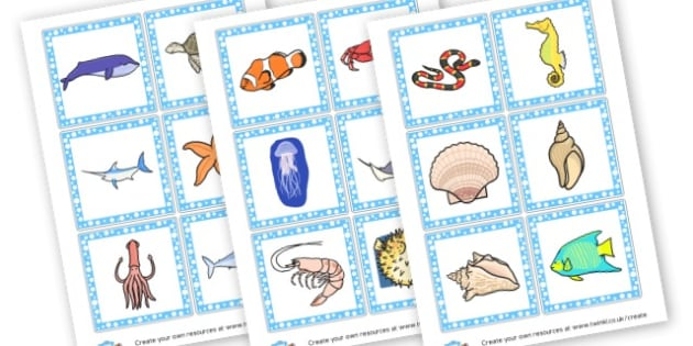 Under the Sea Animal Flashcards - Under the Sea Primary Resources - sea, shark, octopus, starfish