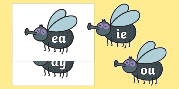Phase 5 Phonemes on Flies - Phonemes, phoneme, Phase 5, Phase five, Foundation, Literacy, Letters and Sounds, DfES, display