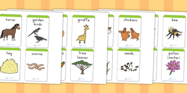 Animals and What They Eat Matching Cards - food, match, sort