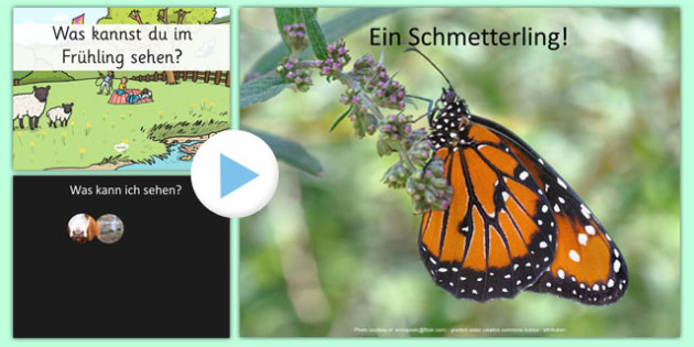 Spring What Can You See? PowerPoint German - EAL, translated, season, springtime, science, nature
