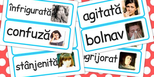 Emotii si Sentimente, cartonase cu fotografii si cuvinte, Romanian