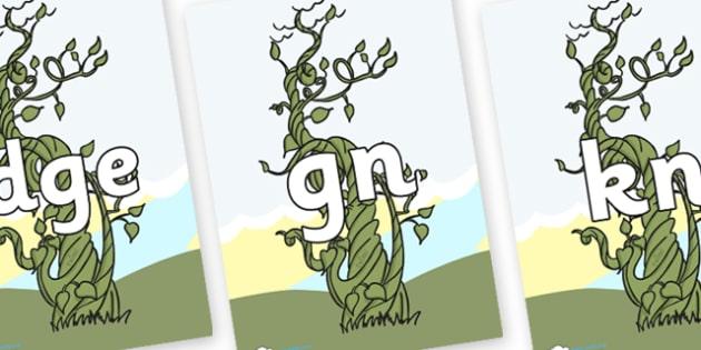 Silent Letters on Beanstalk - Silent Letters, silent letter, letter blend, consonant, consonants, digraph, trigraph, A-Z letters, literacy, alphabet, letters, alternative sounds