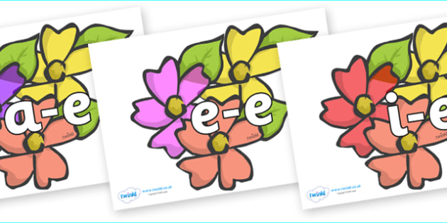 Modifying E Letters on Flowers - Modifying E, letters, modify, Phase 5, Phase five, alternative spellings for phonemes, DfES letters and Sounds