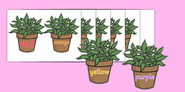 Florist Colours On Plant Pots Posters - Florist Role Play, florist, flower shop, flowers, bouquet, flower decorations, till, money, gifts, role play, display, poster