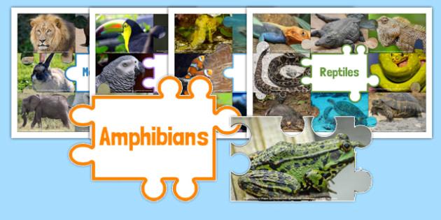 Animal Groups Sorting Jigsaw - animal groups, sorting, jigsaw