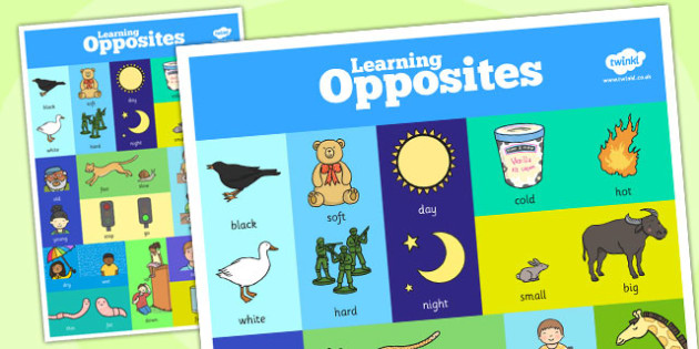 Opposites Poster - opposites, display poster, difference, display
