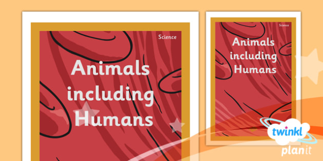 PlanIt - Science Year 6 - Animals Including Humans Unit Book Cover - planit, science, year 6, book cover, unit, book, cover, animals including humans