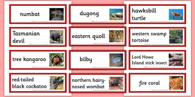 Endangered Australian Animals Word Cards - australia, animals, endangered