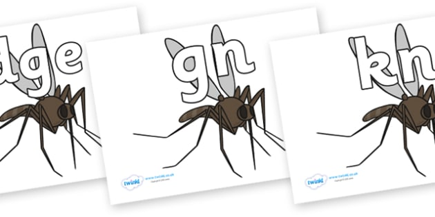 Silent Letters on Mosquitos - Silent Letters, silent letter, letter blend, consonant, consonants, digraph, trigraph, A-Z letters, literacy, alphabet, letters, alternative sounds
